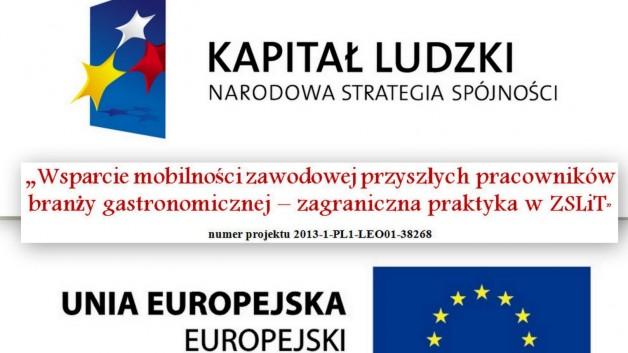 http://www.zslit.gubin.pl/wp-content/uploads/2014/04/Logo-projekt-628x353.jpg