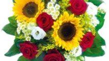 http://www.zslit.gubin.pl/wp-content/uploads/2020/10/kwiaty-m-213x120.jpg